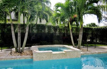 fenced backyard swimming pool and pool deck after renovation