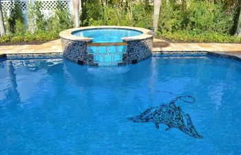 backyard swimming pool with jacuzzi