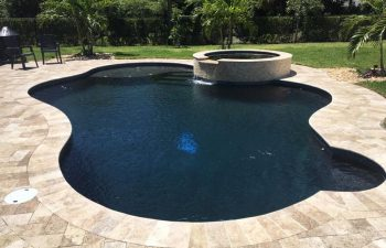 backyard swimming pool and jacuzzi with ebony blue water color