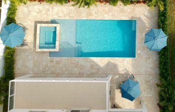 aerial view of swimming pool with jacuzzi in a landscaped backyard