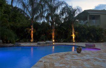 backyard swimming pool with Travertine deck