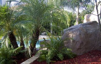 hardscapes by backyard swimming pool