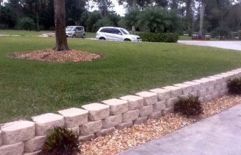 manicured lawn by a driveway